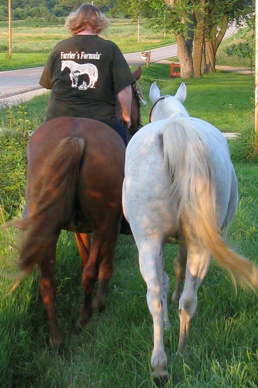Linda Riding Horse