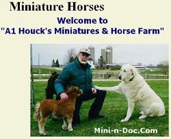 Houck's Horse Farm