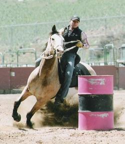 Dawn Mutchelknaus - Equine Trainer and Competitor