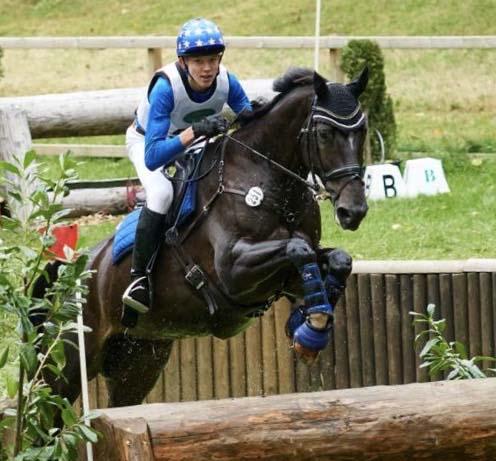 Sandra Jumping Horse