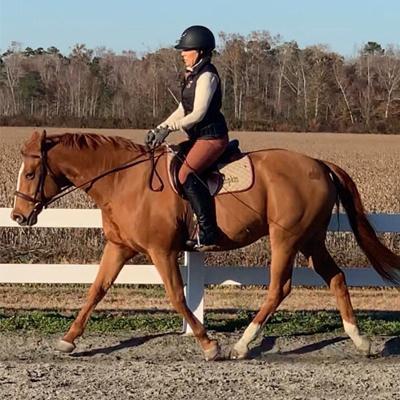 Lorie Walking Horse